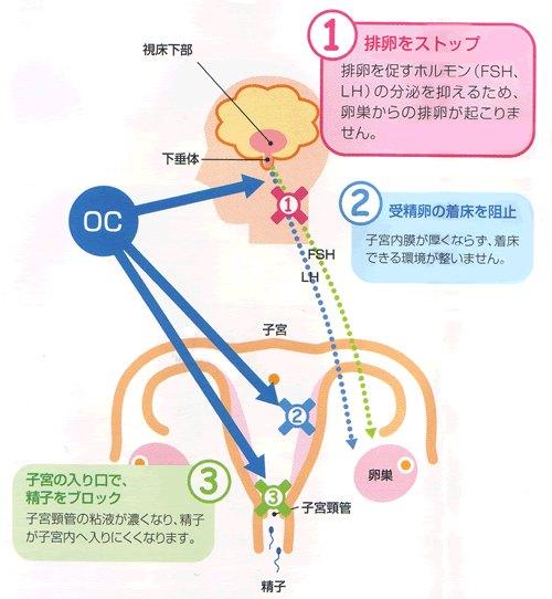 OCの仕組み