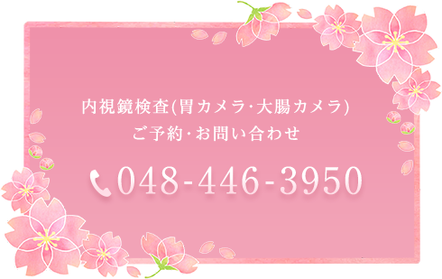 内視鏡検査(胃カメラ・大腸カメラ)ご予約・お問い合わせ TEL:048-446-3950